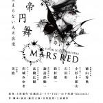 MARSRED2013_25